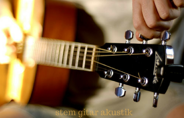 stem gitar akustik